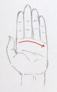 手 描き方 指の付け根