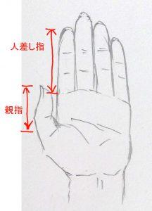 手 描き方 親指 人差し指