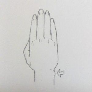 手 描き方 手首